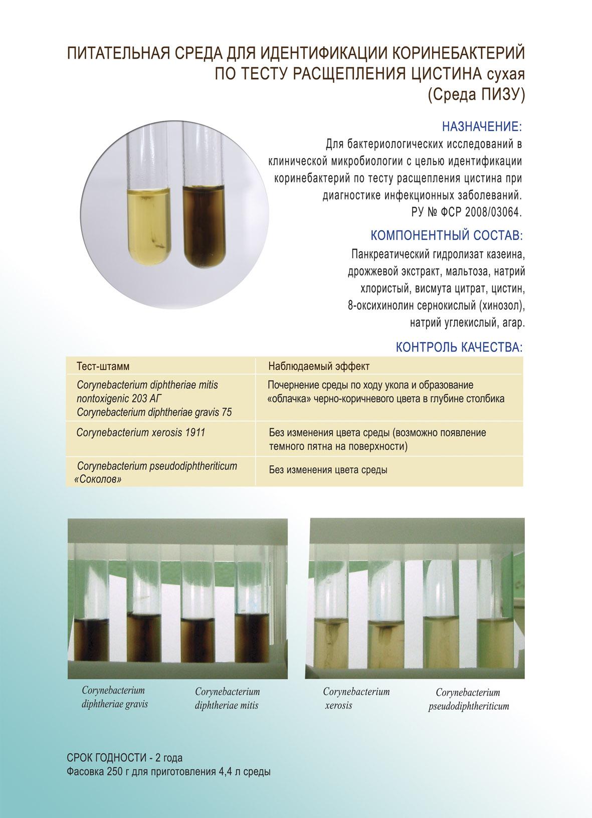 http://cs.sredy-obolensk.ru/-/qt-gKq19gAb63nH0leh_BQ/sv/image/72/e8/e6/253460/450/%D0%BF%D0%B8%D0%B7%D1%83.jpg?1460832442